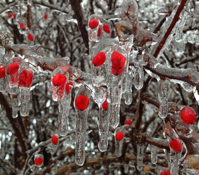 Baby, It's Cold Outside! Let's Explore Some Cold Phrases and Idioms