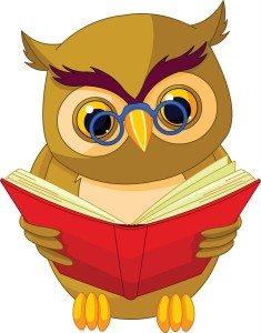 Grammar owl_2