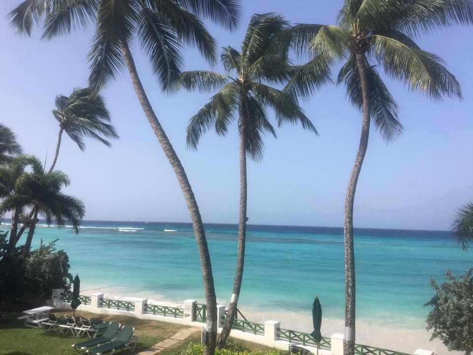 Sweet Barbados